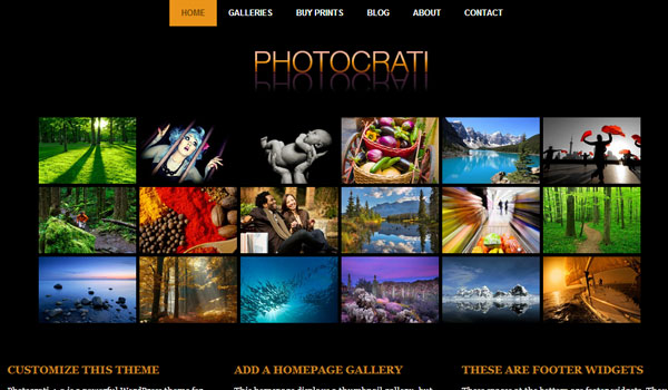 Five Best Photography Web Themes for WordPress