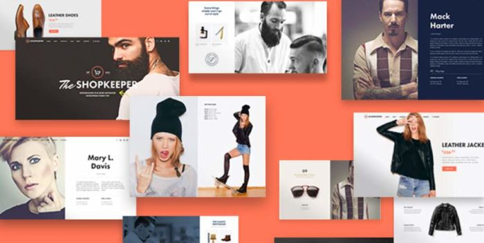Five Best WordPress Web Themes for eCommerce