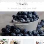 Tema Elara Pro, Tema Blog WordPress Yang Digunakan Untuk Blogger Makanan